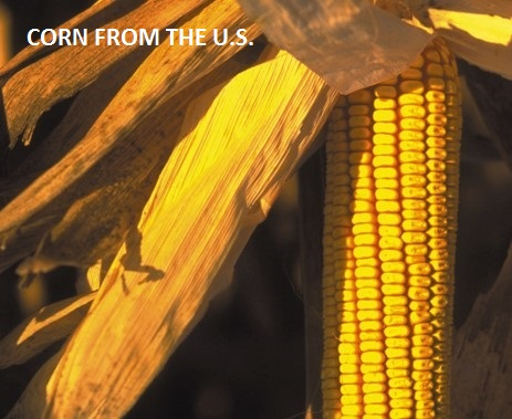 Corn from the U.S.